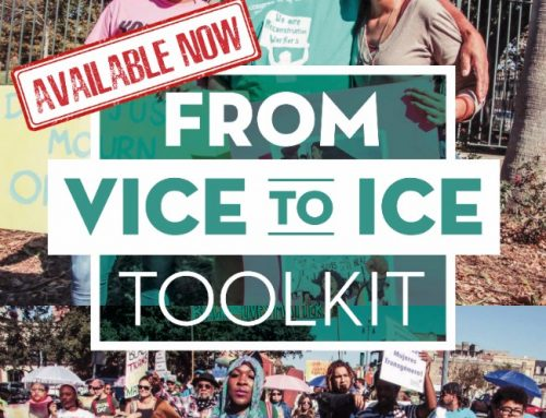 No Pride In Deportation! VICE2ICE Toolkit Available Now!
